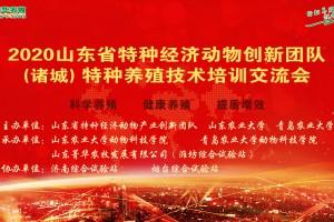 山东菁华协办2020年山东省特种经济动物产业创新团队(诸城)特种养殖技术交流会圆满落幕